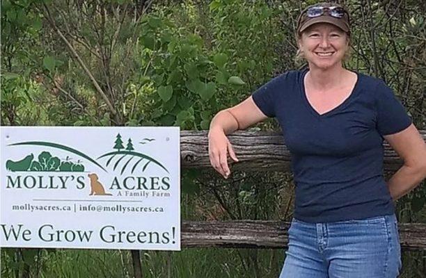 Molly's Acres Farm